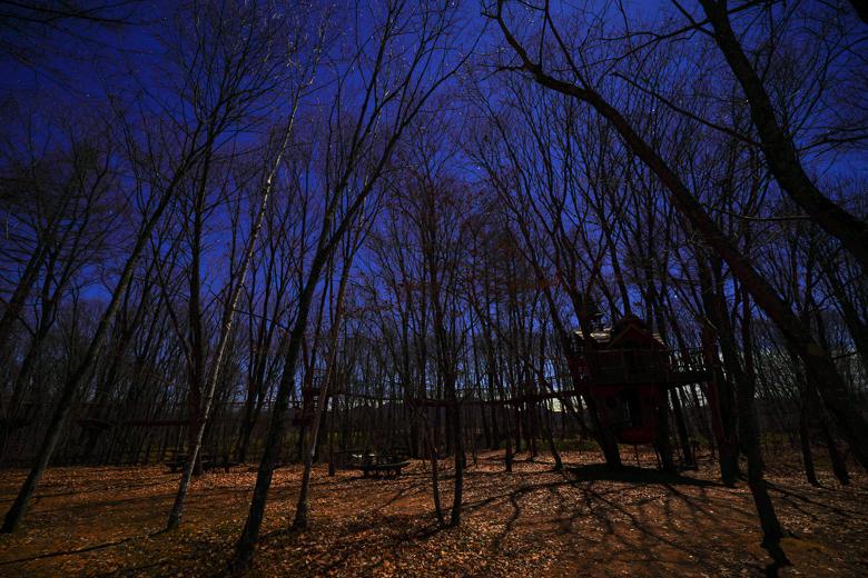 北軽井沢スウィートグラス おしぎっぱの森