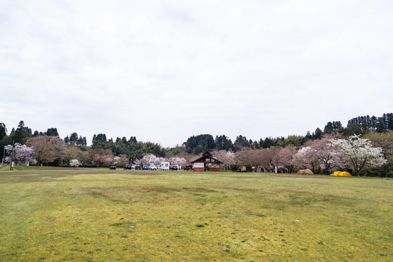 上和田緑地キャンプ場