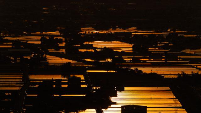閑乗寺公園から散居村と夕日